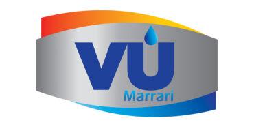 In-Line Volume and Moisture Meter Marrari