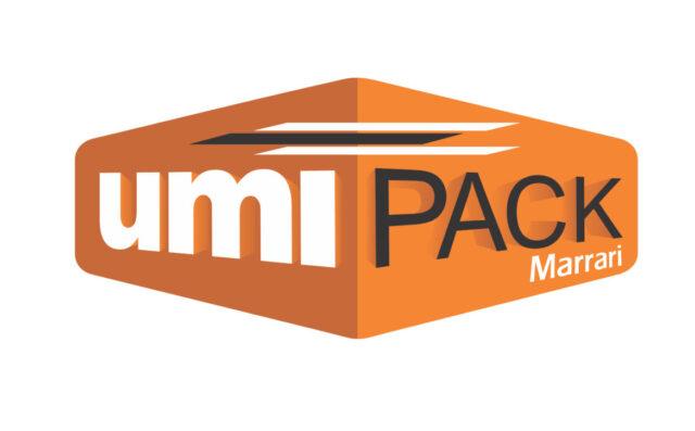 Medidor de Umidade de Pacote de Madeira - UmiPack