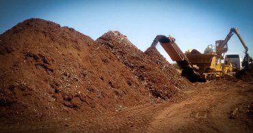 Umidade da Biomassa